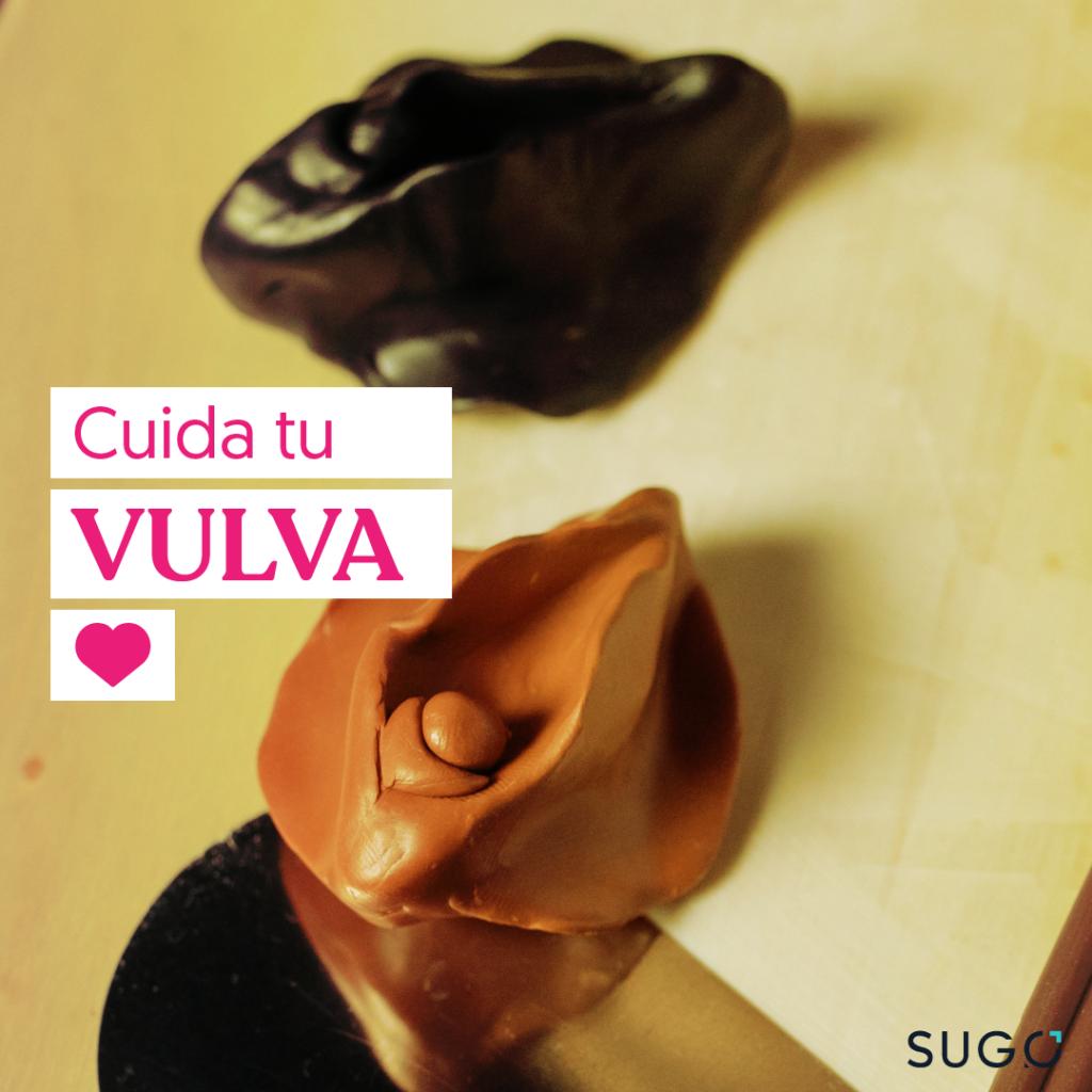 Cuida tu vulva